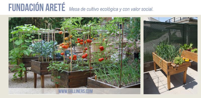 Mesa Cultivo F. Areté