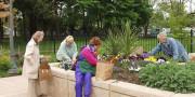 Jardines terapéuticos Portland